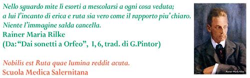 MO_61_28-34_Clinica_2